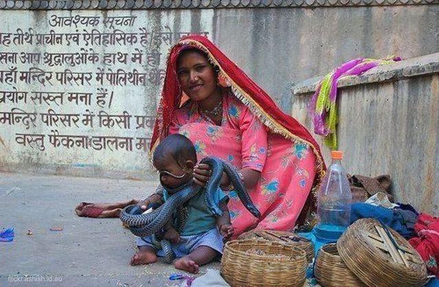 Hindistanda Yaşamak