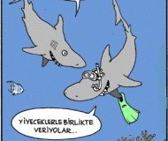 ingilizce karikatür -caricature cartoon