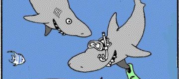 İngilizce Karikatür- Caricature Cartoon