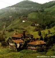 Doga-Manzara-Resimleri
