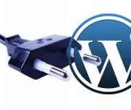 wordpress Hızlandırma
