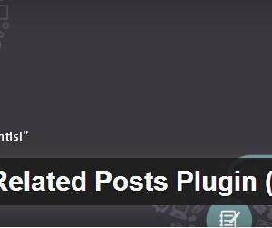 Wordpress Benzer Yazılar Eklentisi